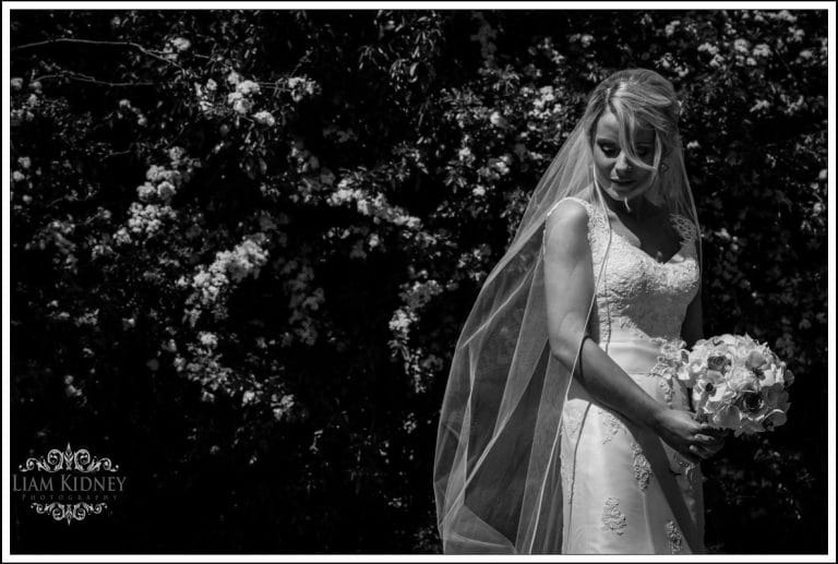 Read more about the article Wedding of Niamh and Brian, Sacred Heart Church Roscommon, Hodson Bay Hotel |Westmeath Photographer