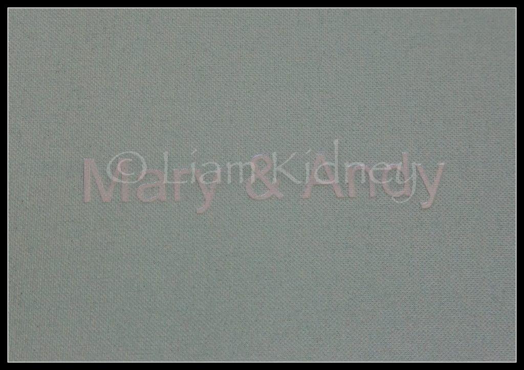 Jorgensen Art Albums-10